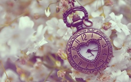 White Flowers And Pocket Watch