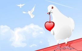White Pigeon With Red Heart