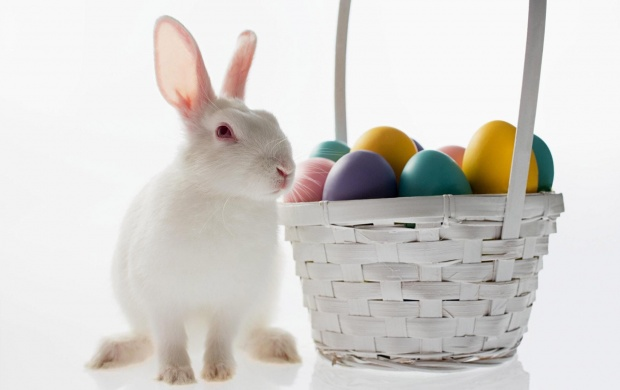 White Rabbit And Easter Eggs (click to view)