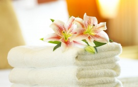 White Towel And Lily Flower
