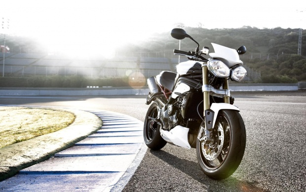 White Triumph Speed Triple R (click to view)