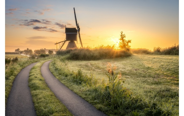 Windmill On A Field (click to view)