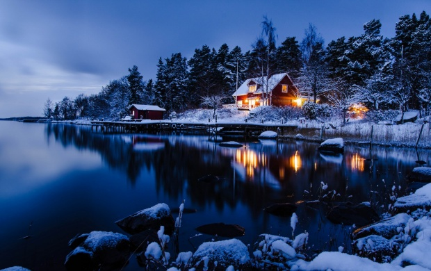 Winter Evening Forest Night Wallpapers