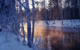 Winter Landscape With Snow Covered Tree Lake