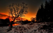 Winter Time Sunset