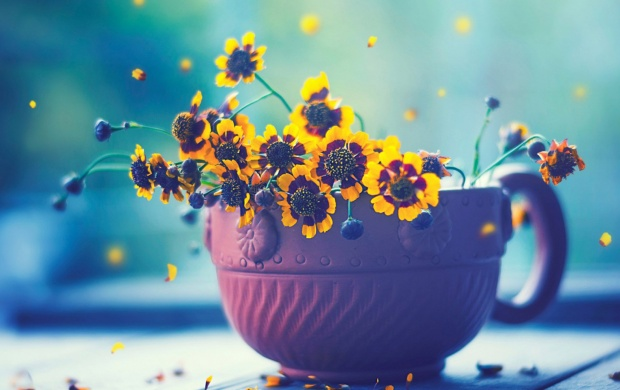 Yellow Flowers In Cup (click to view)