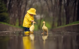 Yellow Raincoat Baby With Ducks
