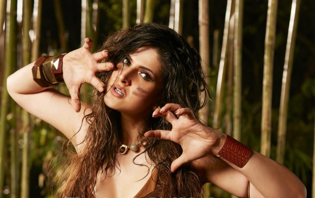 Zarine Khan In Veerappan Movie (click to view)