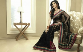 Zarine Khan Saree Gorgeous
