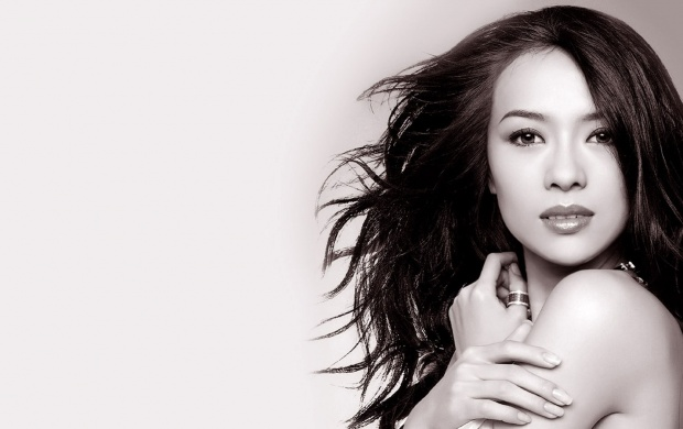 Zhang Ziyi Face (click to view)
