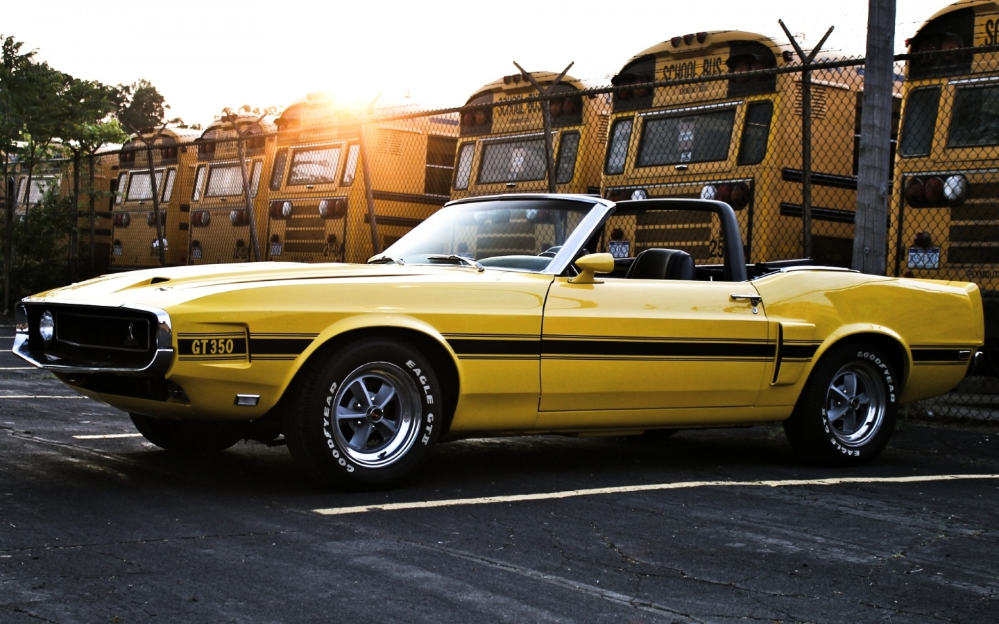 1969 Ford Mustang Shelby Gt350 Wallpapers 1440x900 450275