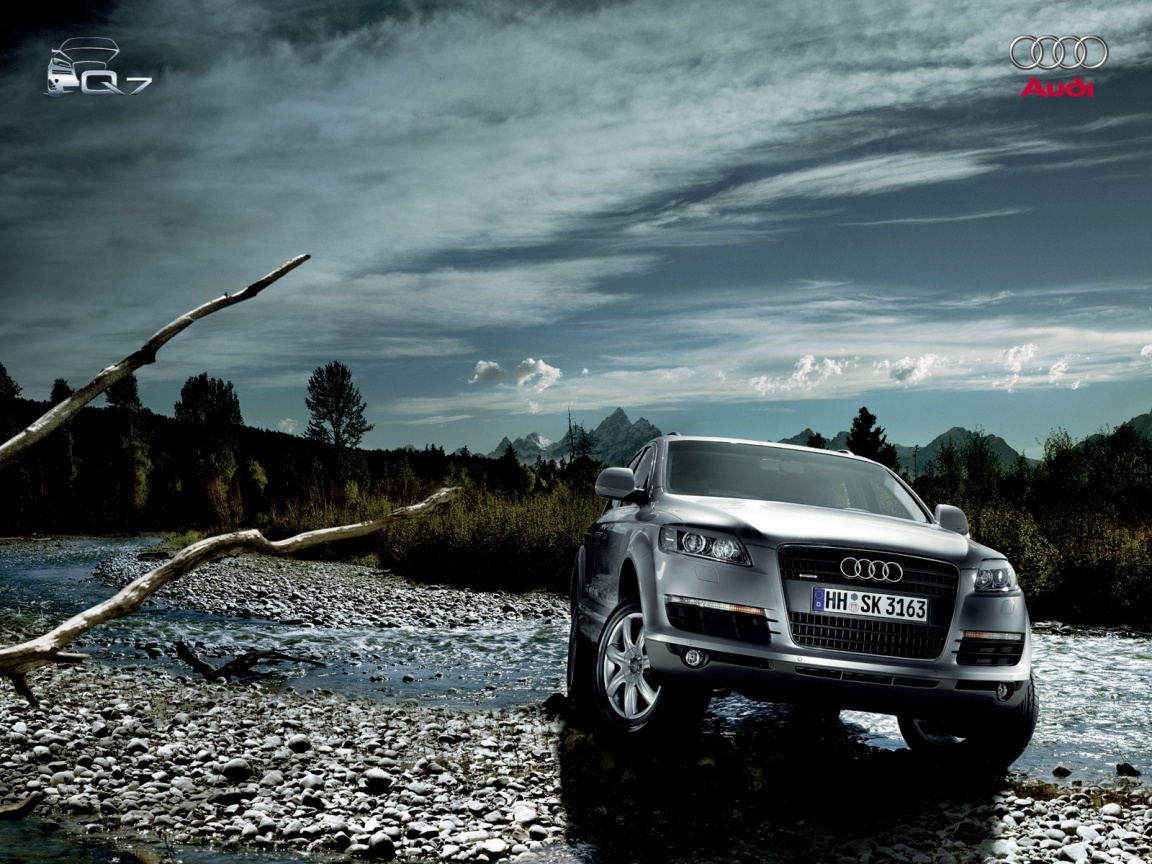 Audi Q7 in natural trees