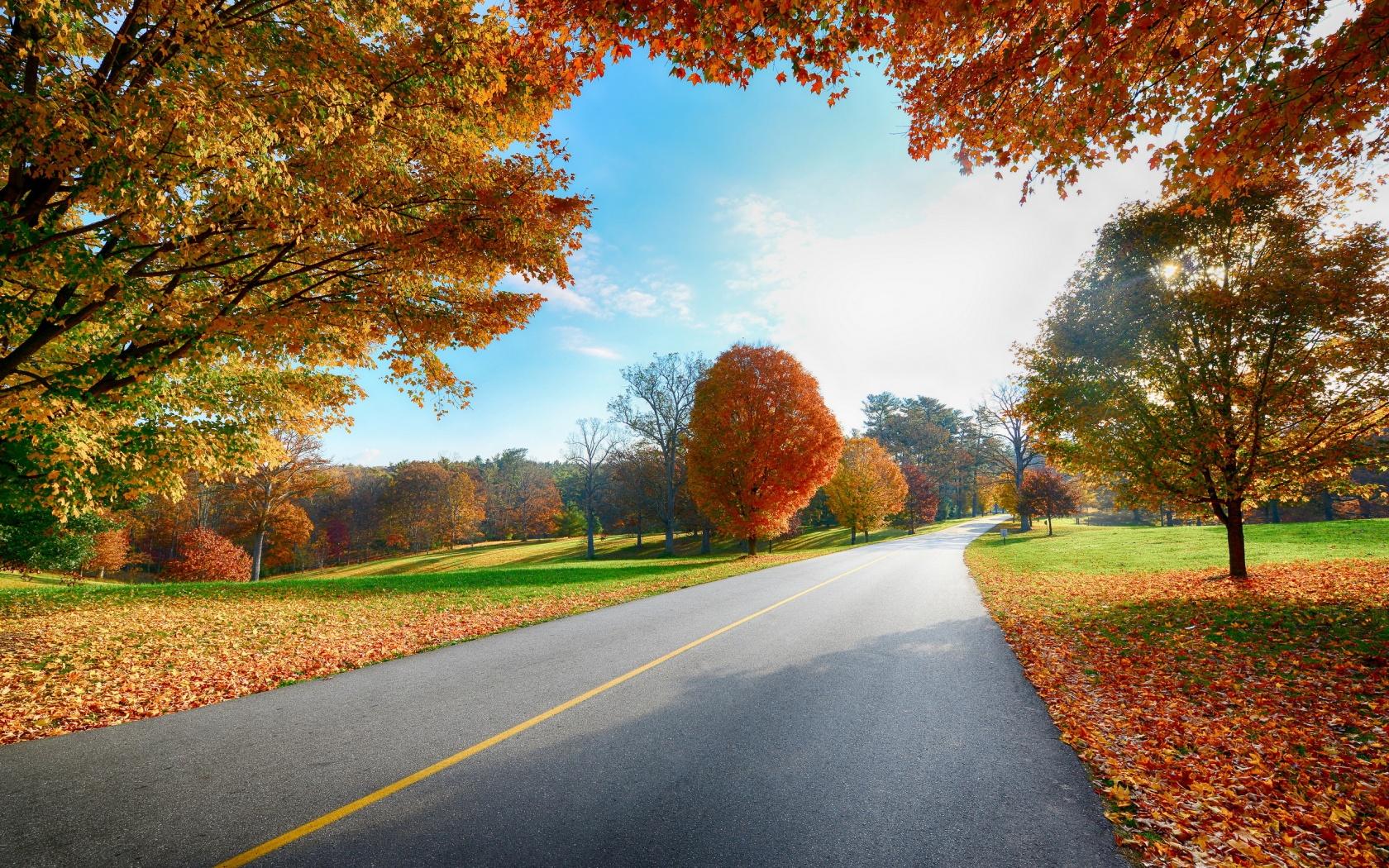 fall wallpaper 1680x1050 - photo #26