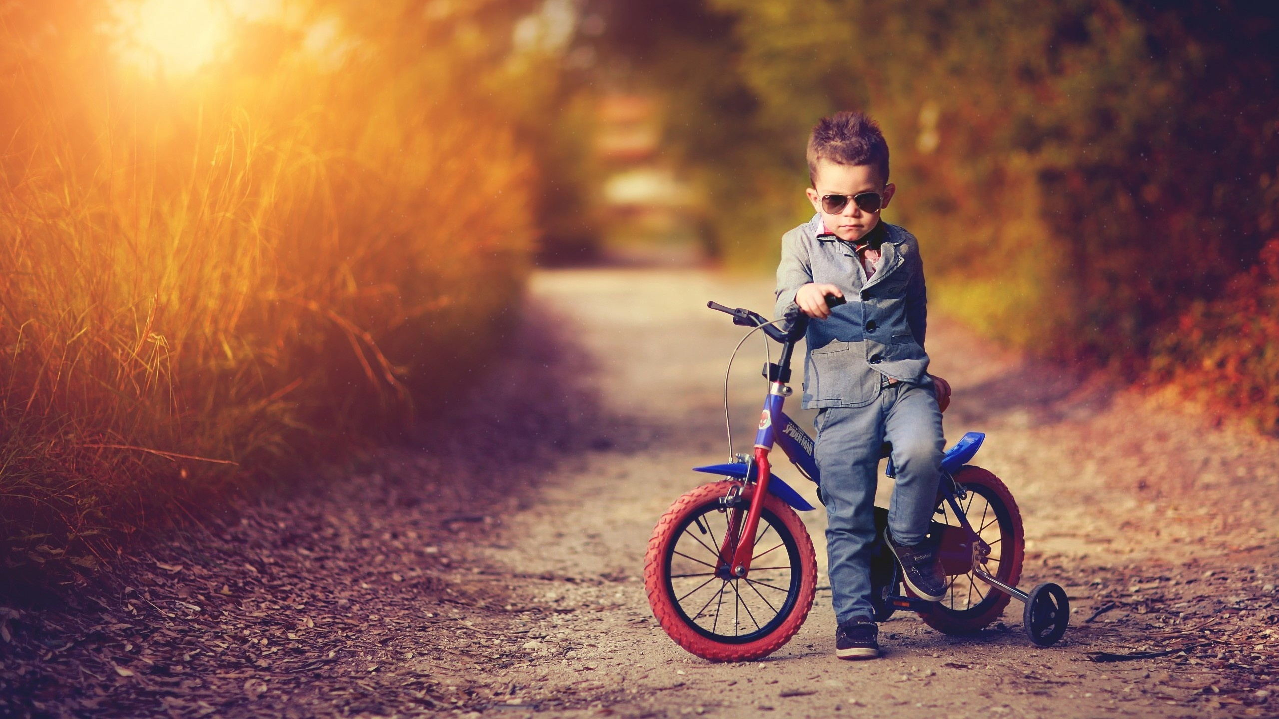 Boy Nice Costume And Bicycle