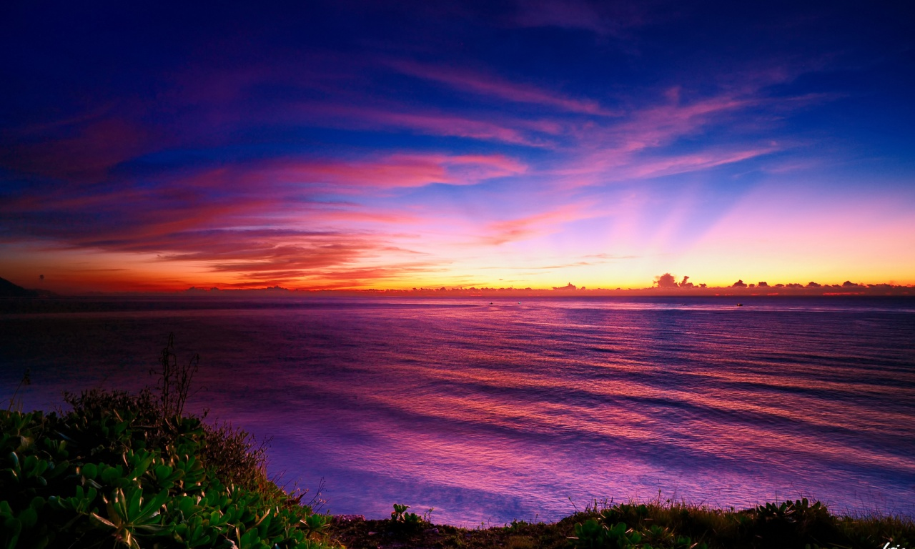 Colorful Horizon Sunsets