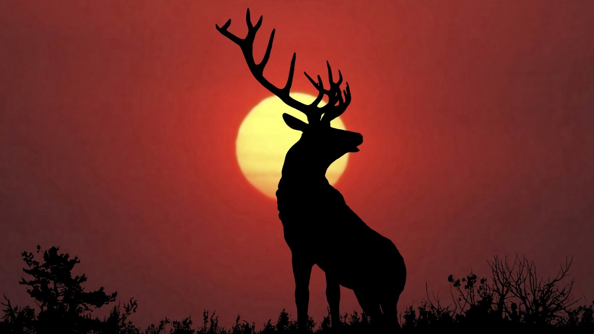 Deer at sunset 2048 x 1152 download close