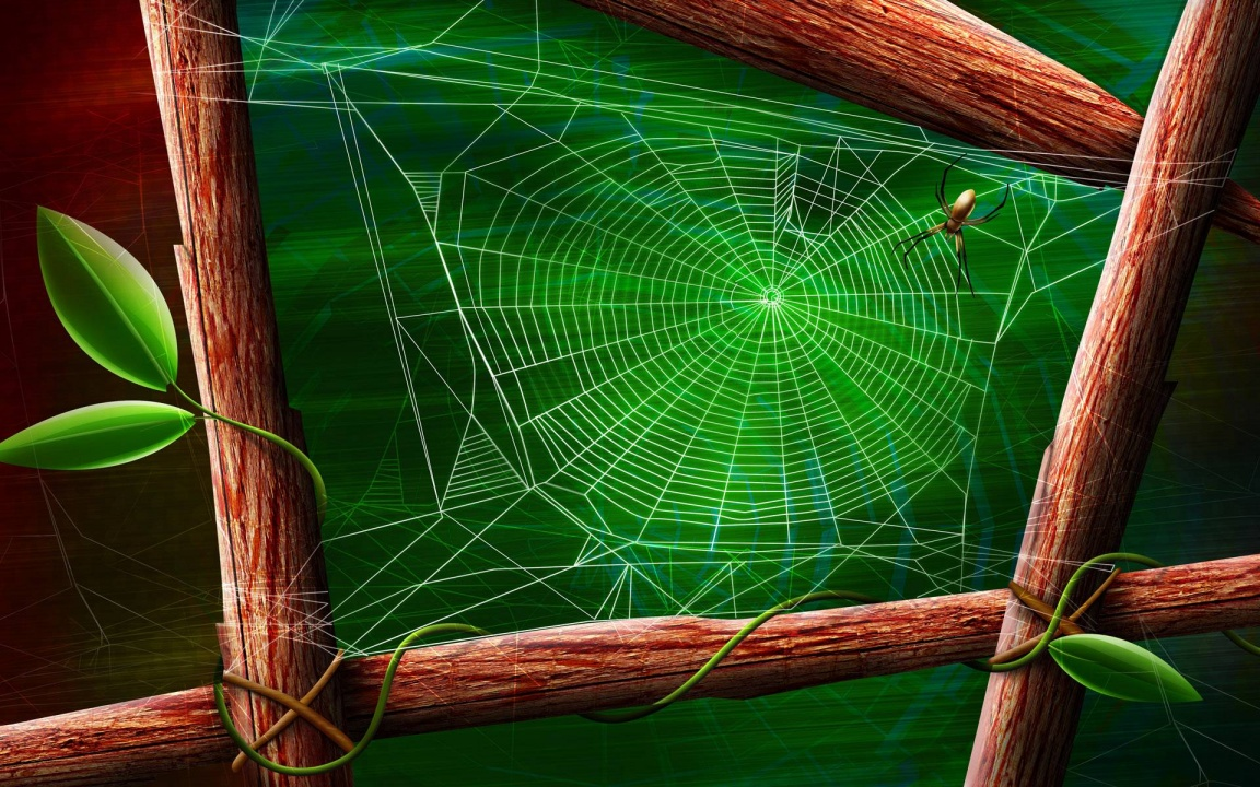 Drawing of Spider on His Web