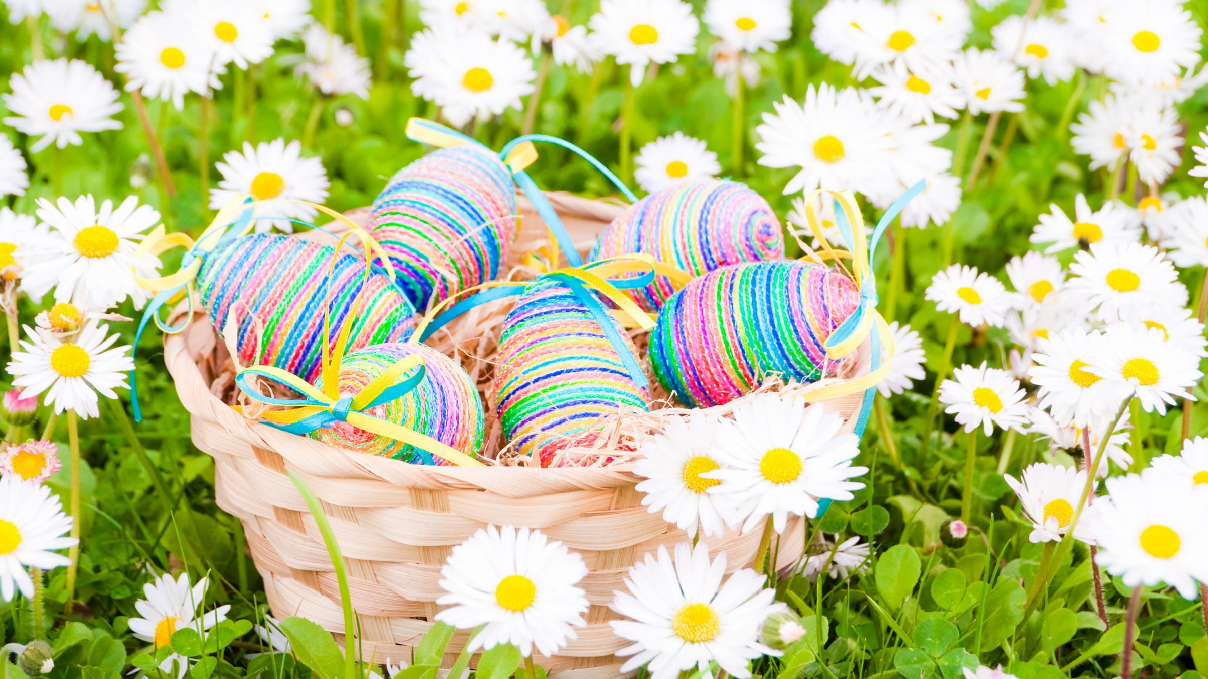 Easter Eggs Daisies Flowers Field