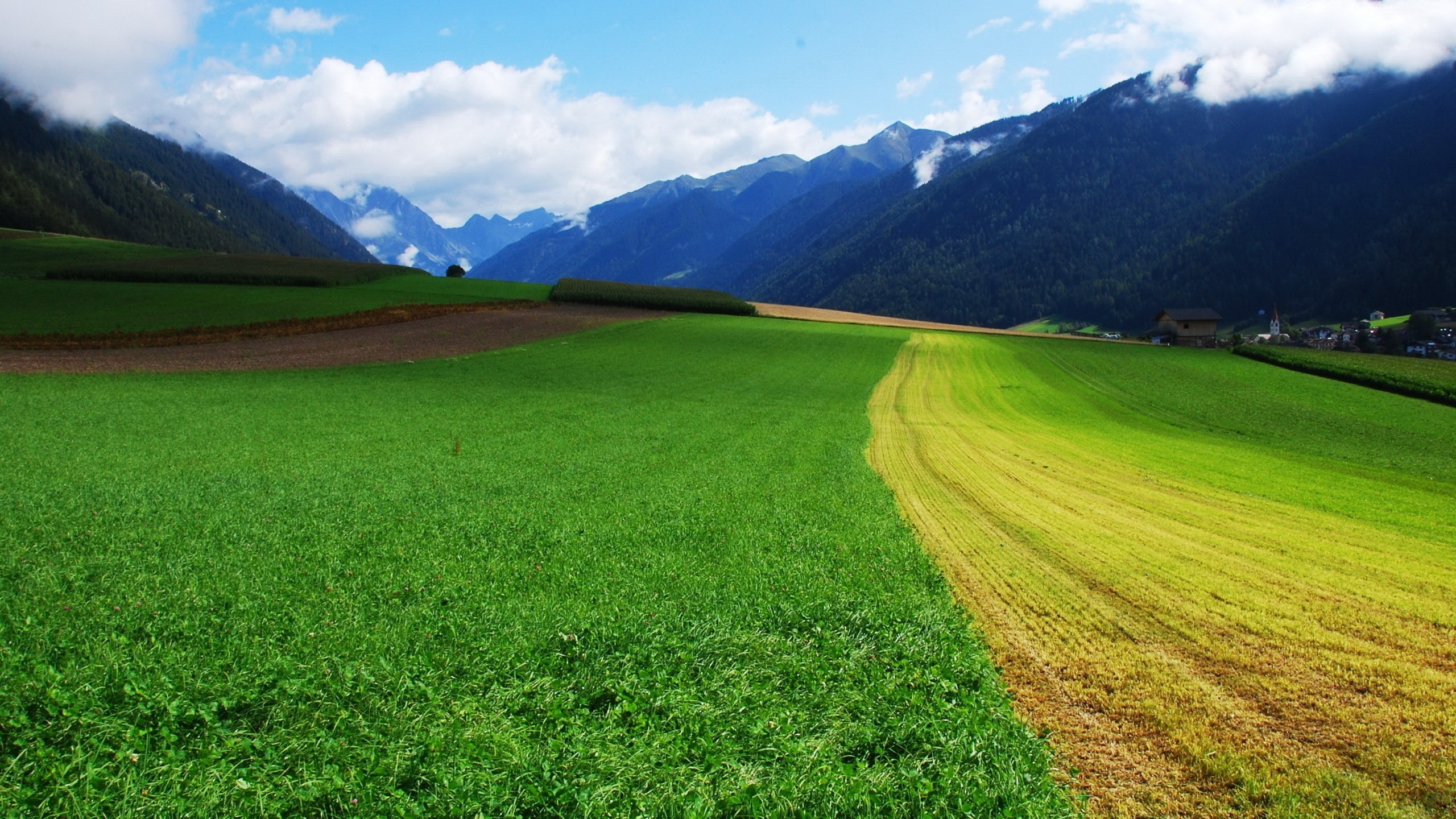 Green Fields Between the Mountains