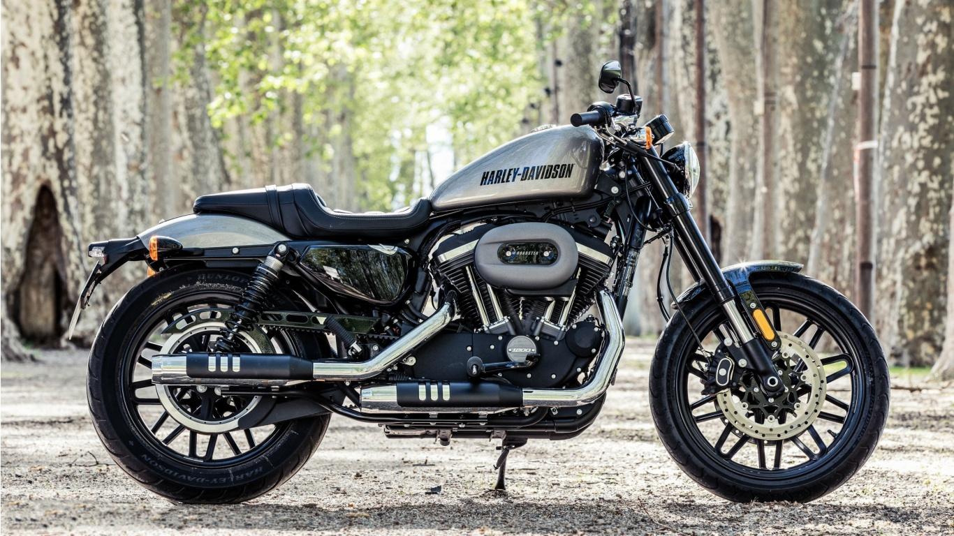 Harley-Davidson Roadster Beauty 2016 Wallpapers