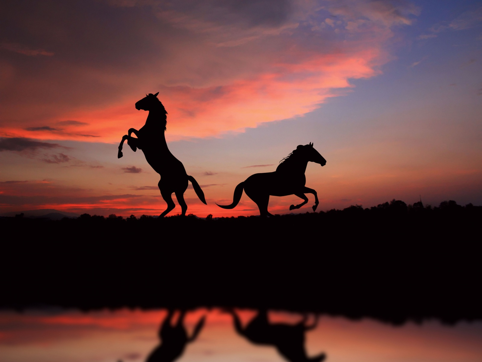 Horse Over Sunset
