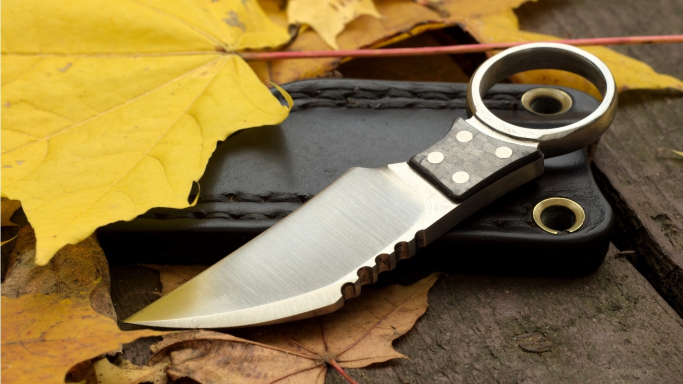 Knife Weapon And Leaves  1366 X 768 Download Close