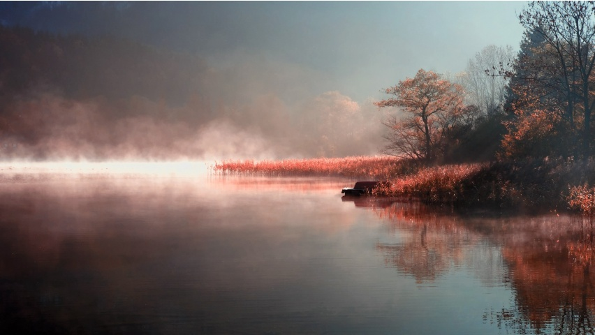 Misty Autumn River