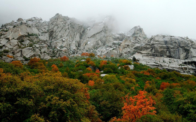 mountain and the greenary -#main