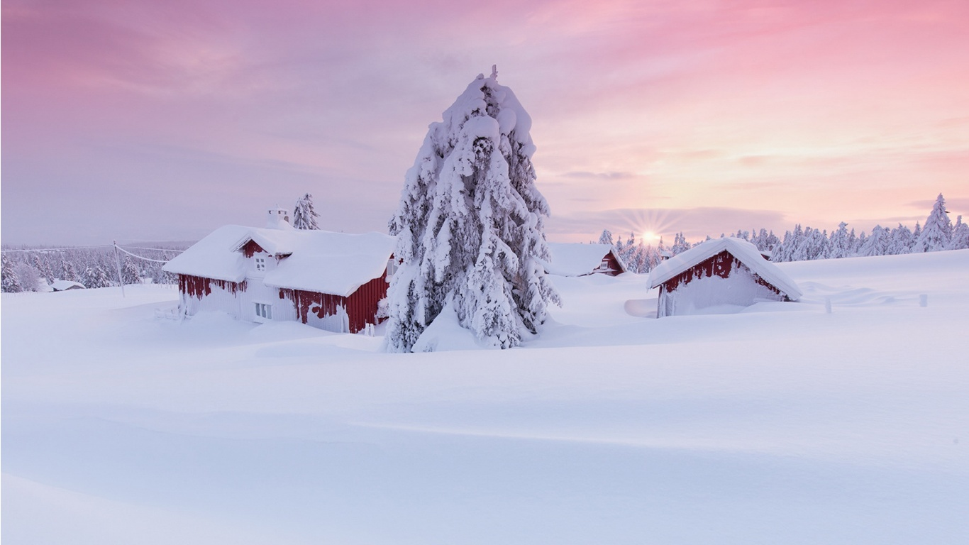 Norway Winter Snow House And Tree