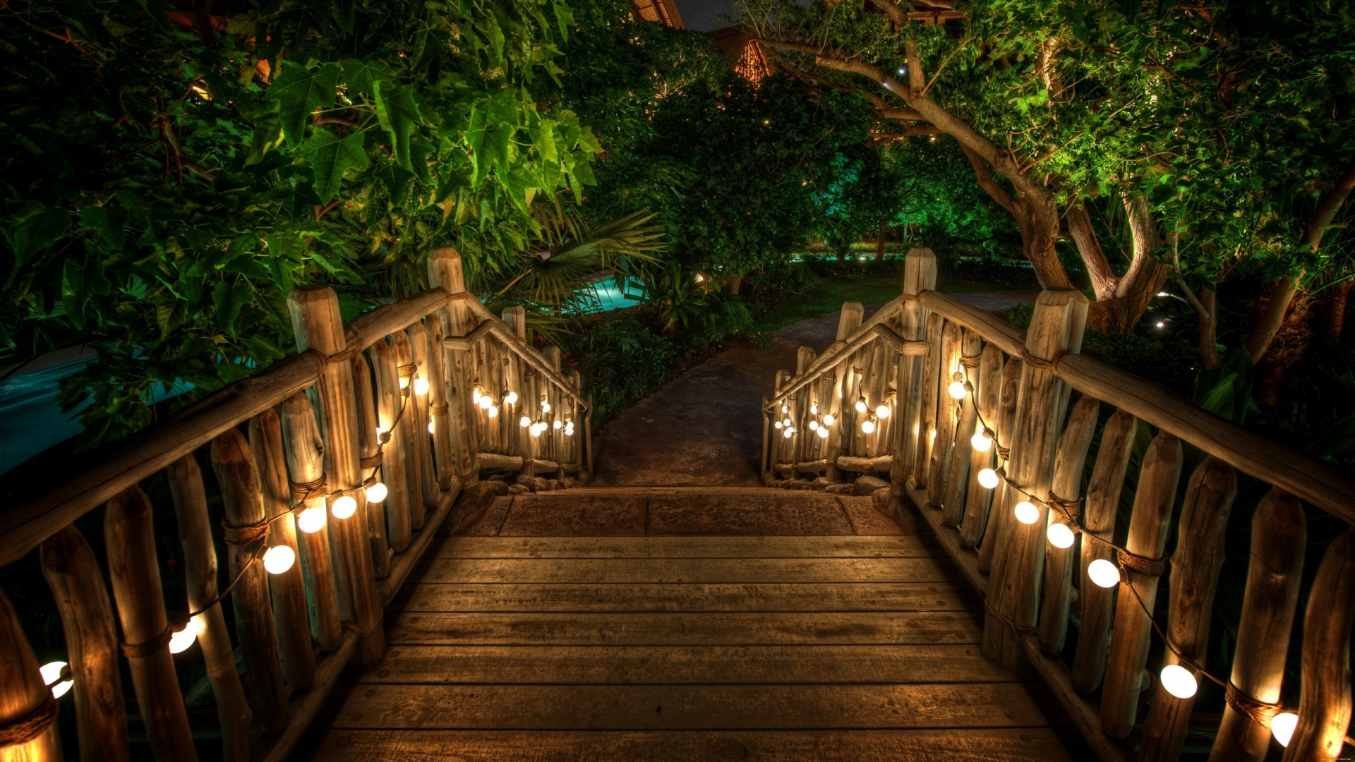 Romantic walkway into the forest