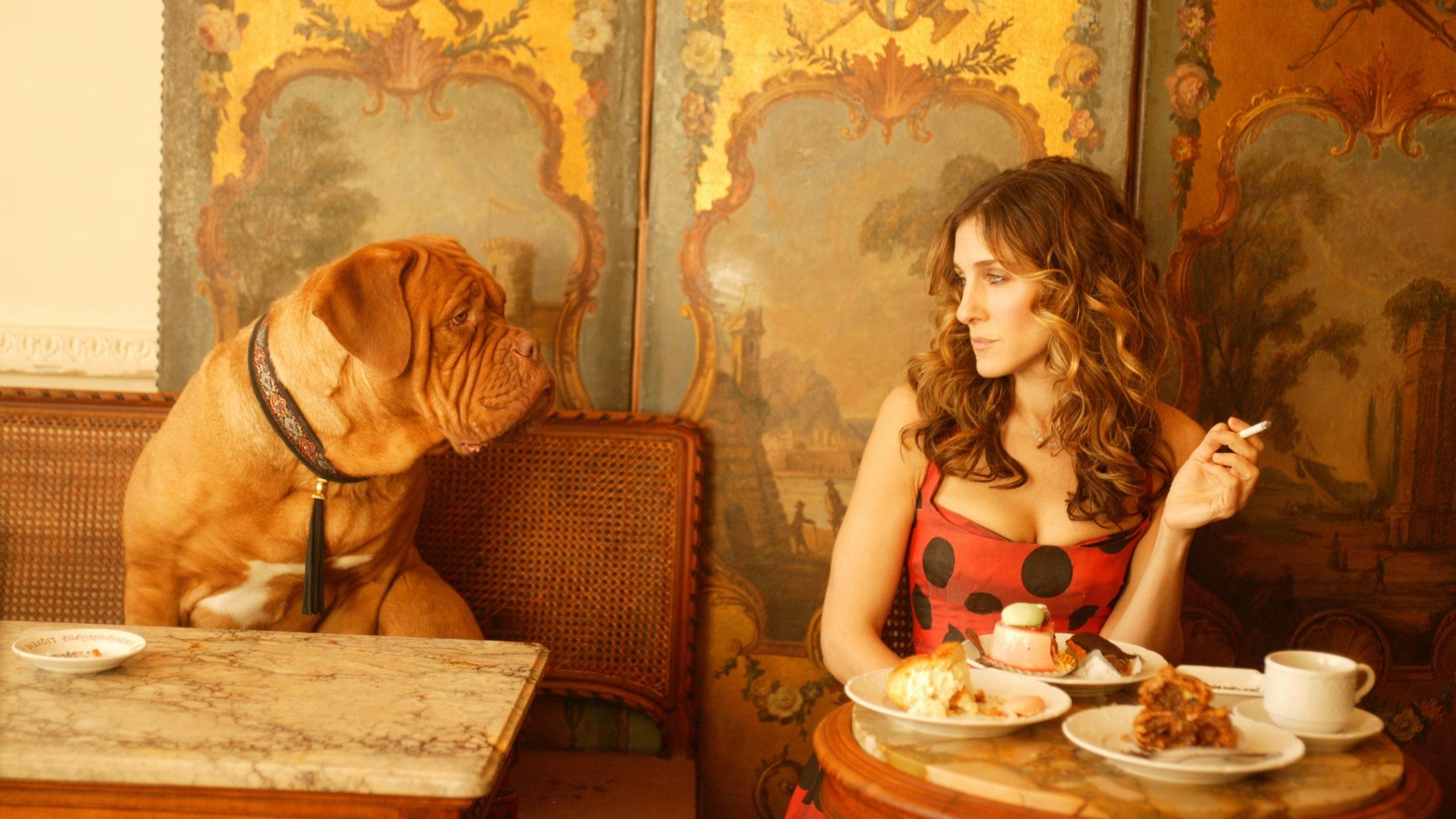 Sarah Jessica Parker, актриса, мастиф, женщина, собака, sex and the
