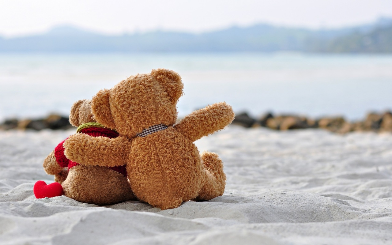 Sweet Teddy Romantic Love