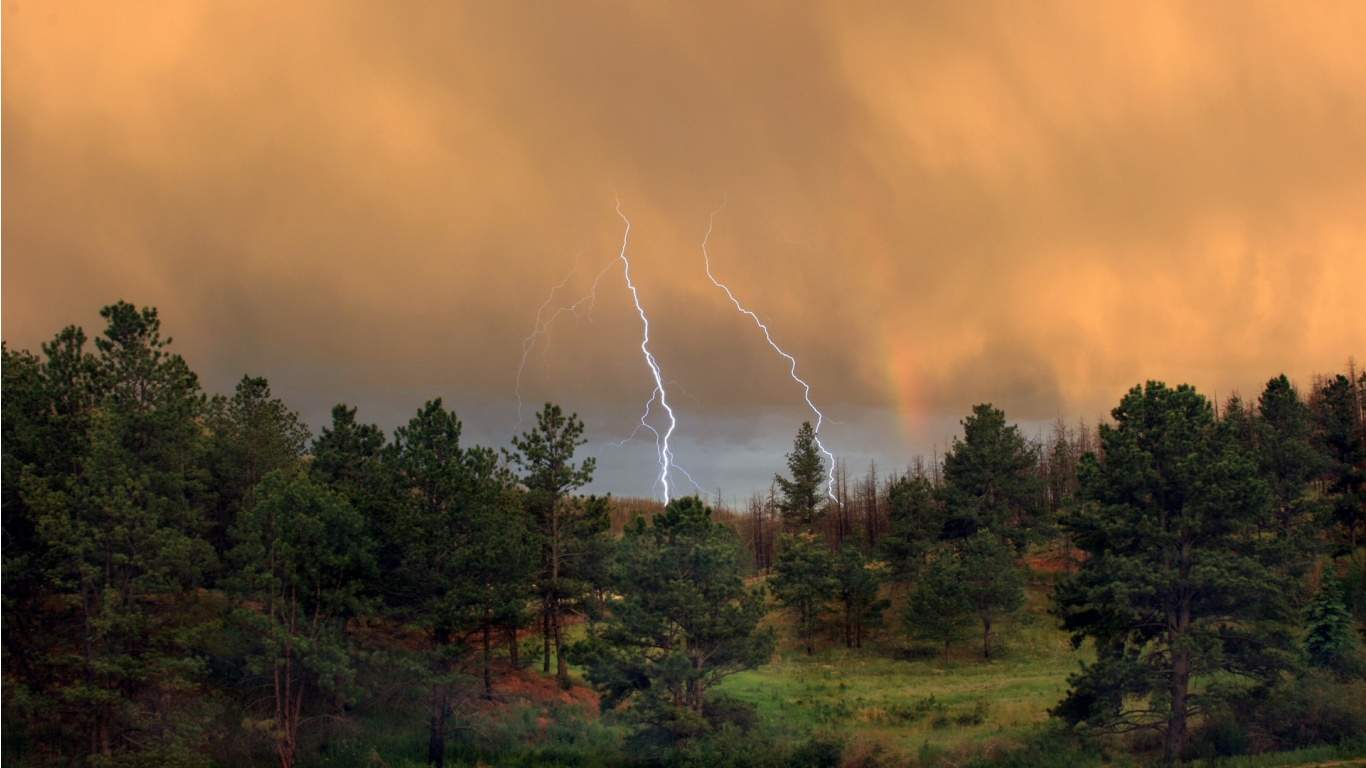 Thunder Storm Over the Forest