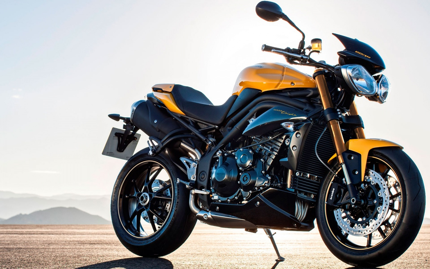 Triumph Speed Triple 94 2016