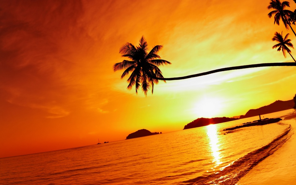 Tropical Beach Resorts Sunset
