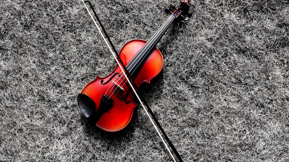 Violin And Its Bow