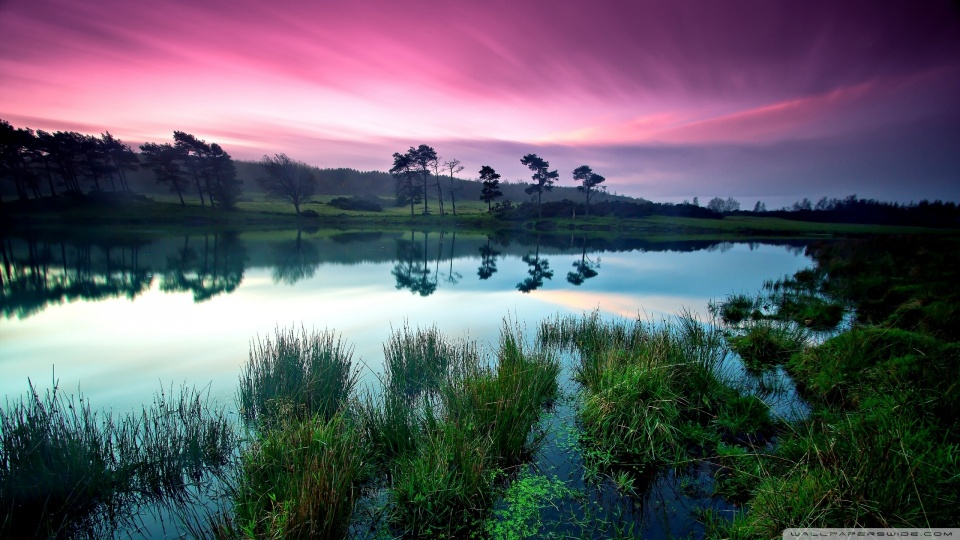 Waterscape With Purple Sky