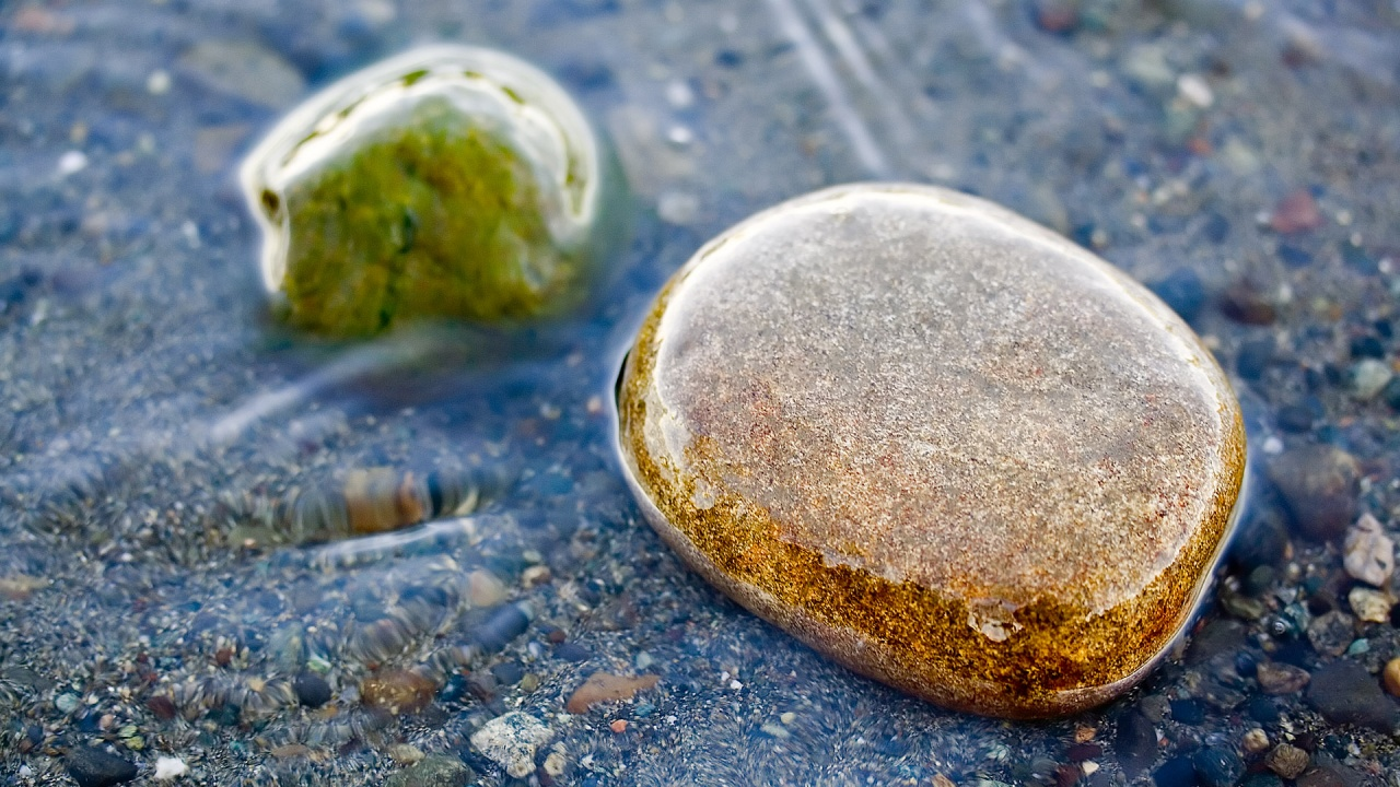 Wet Rocks in Shallow Water