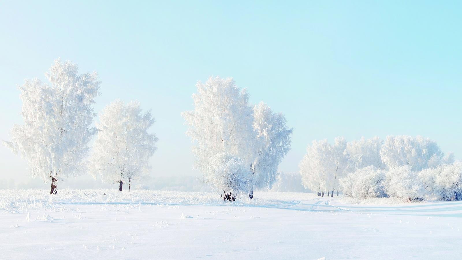 1600x900 hd desktop wallpaper winter - photo #40