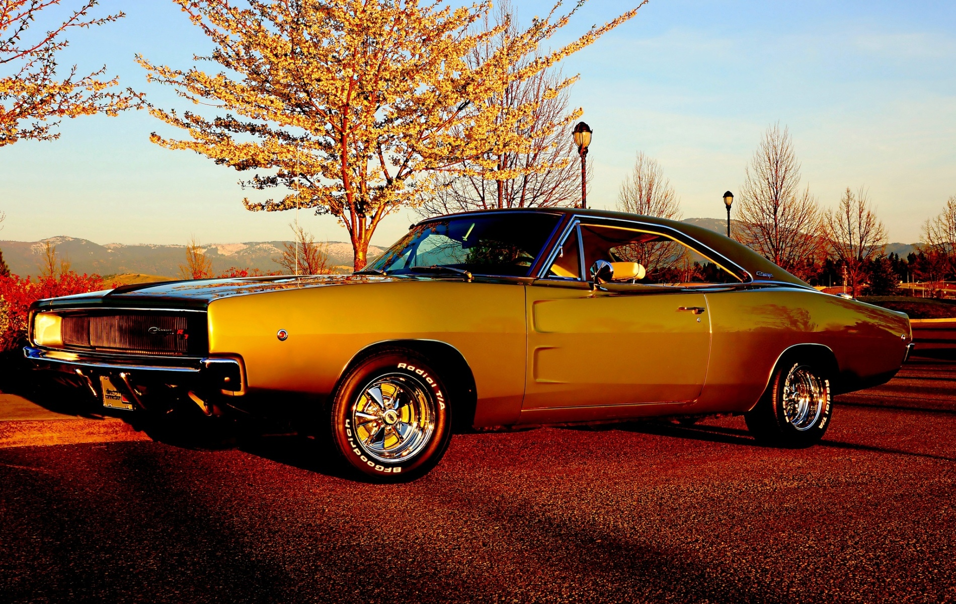 1968 Dodge Charger Rt Wallpapers
