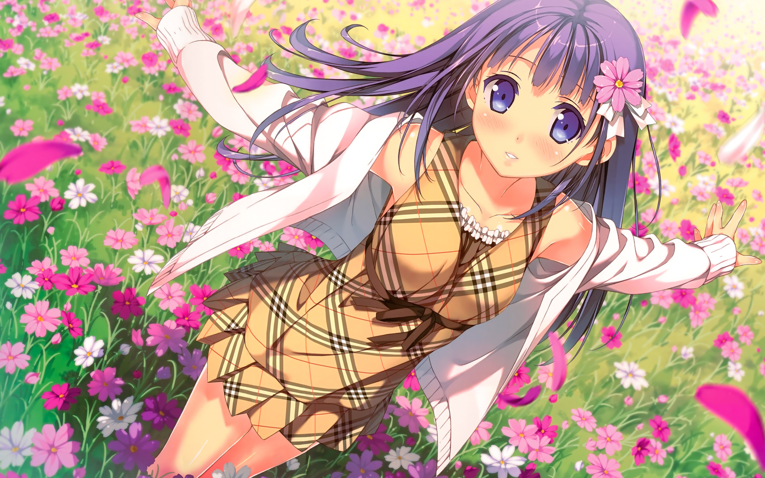 Anime girl and flowers field 2560 x 1600 download close