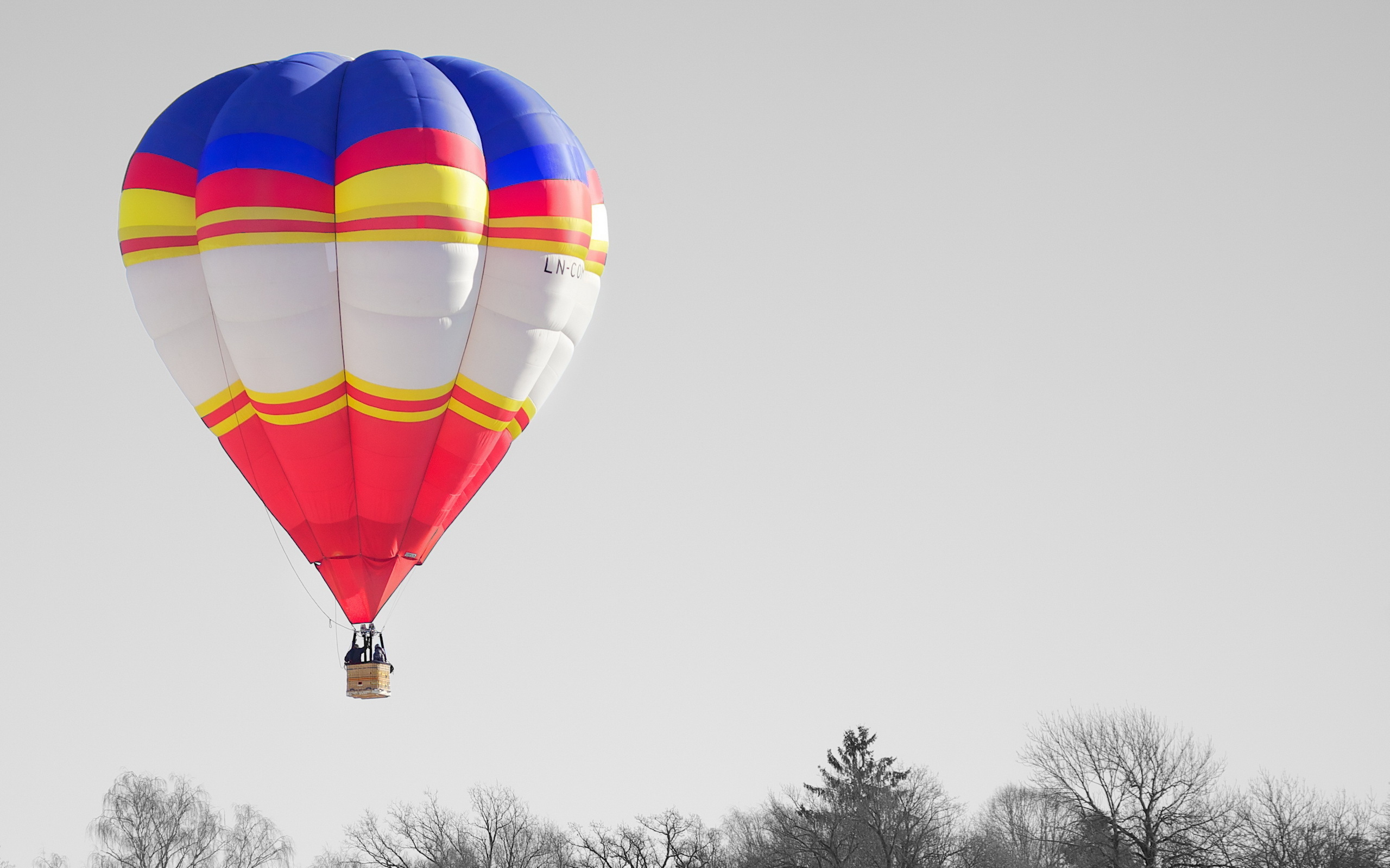 Balloon sky 2560 x 1600 download close
