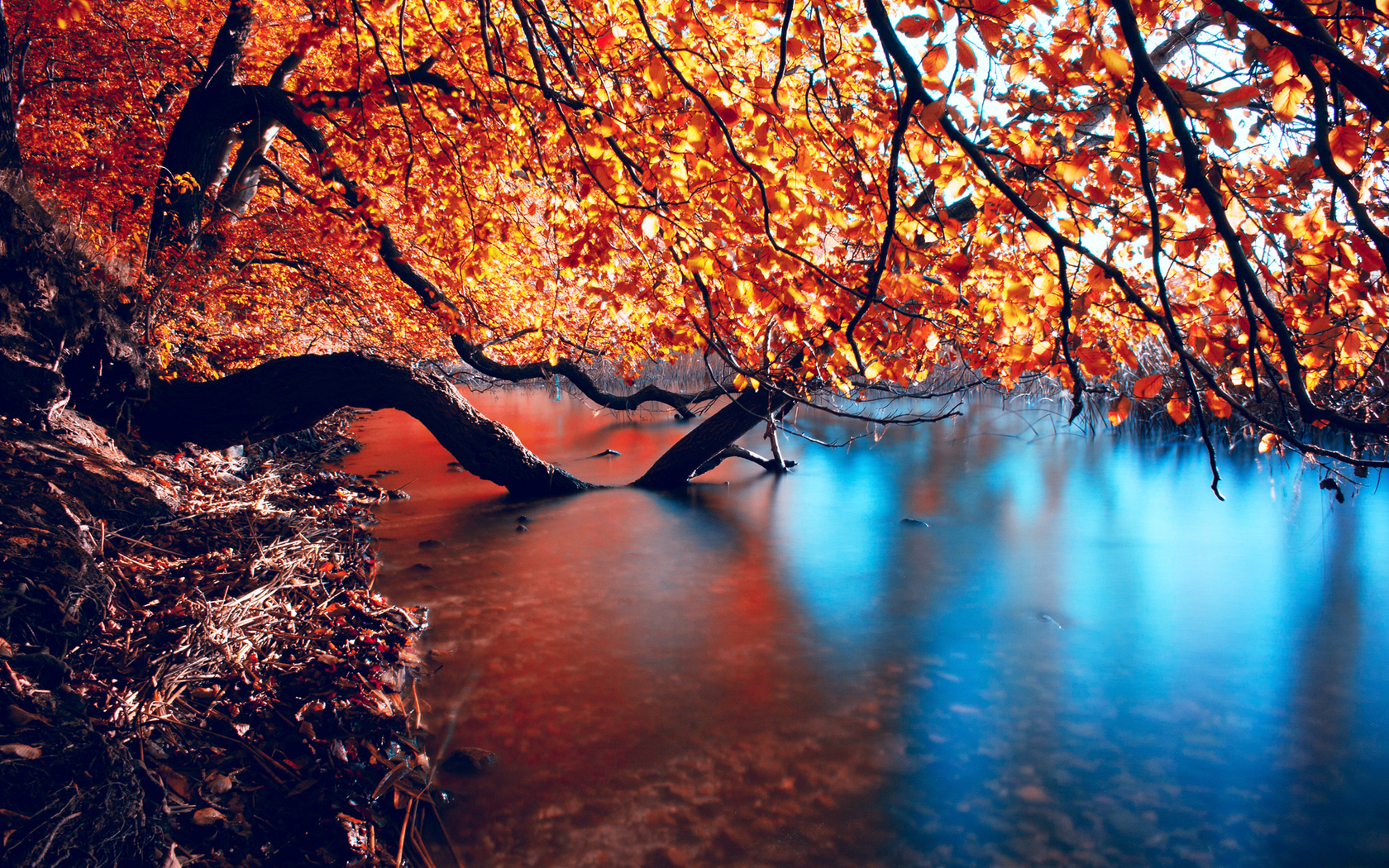 Beautiful autumn lake wallpapers 1680x1050 2946408