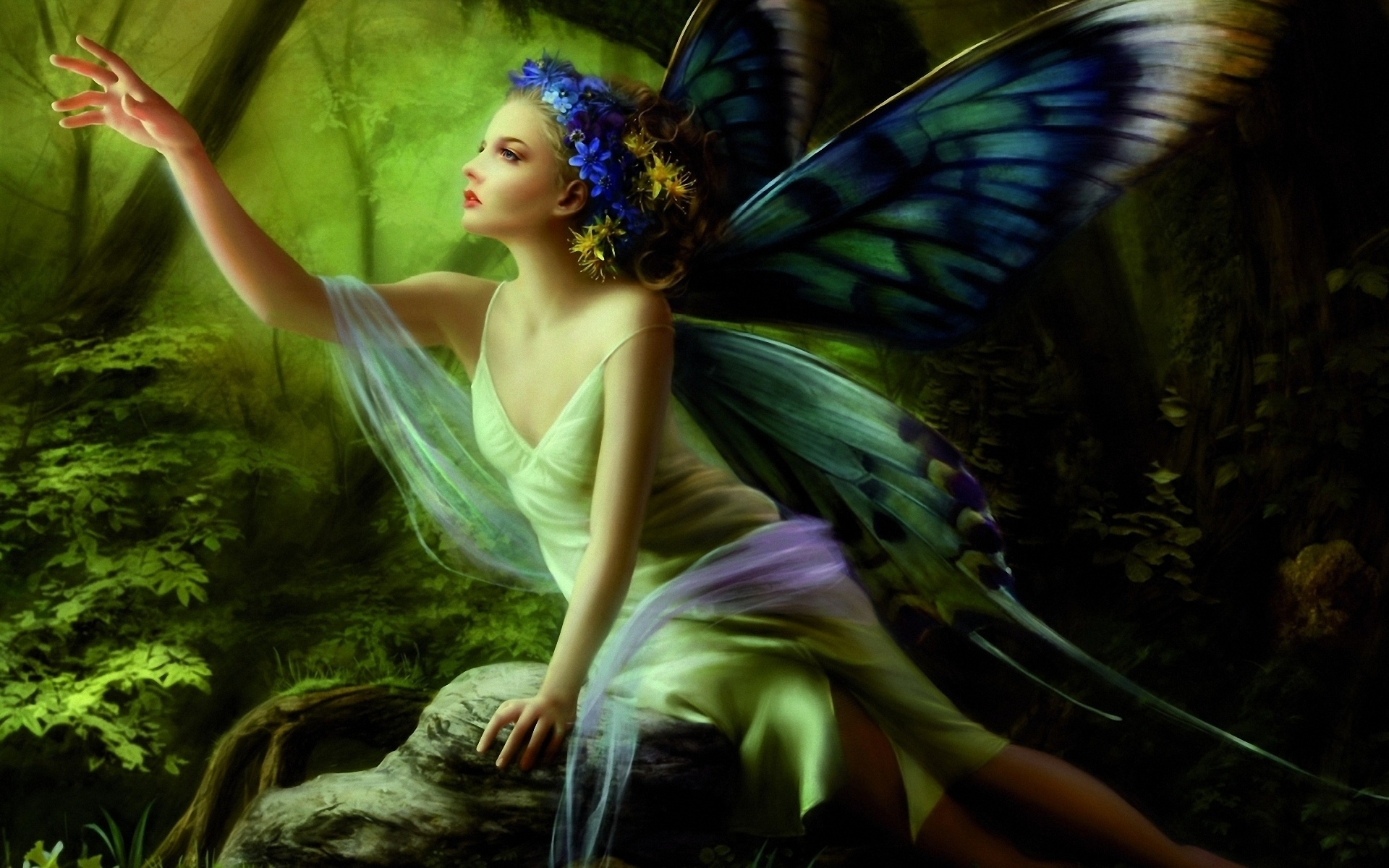 Butterfly fairy 1920 x 1200 download close