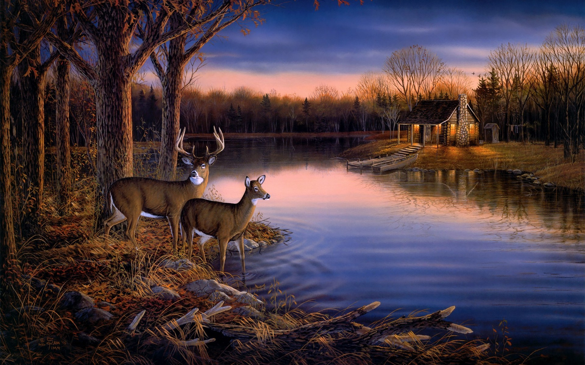 Deer lake evening wall mural wallpapers 1920x1200 630017 for Deer mural wallpaper