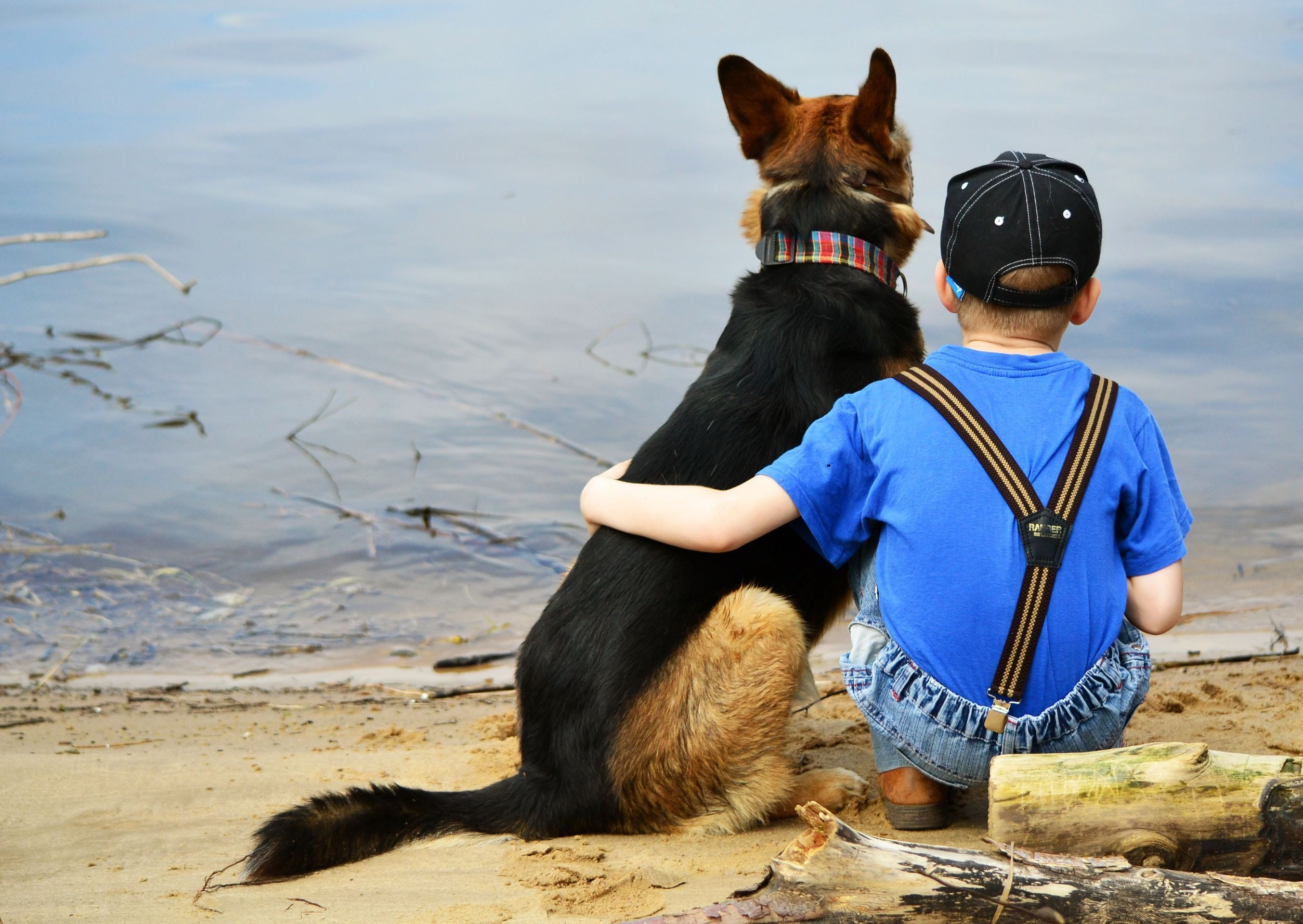 Dog And Boy Friendship   2706 x 1920   Download   Close