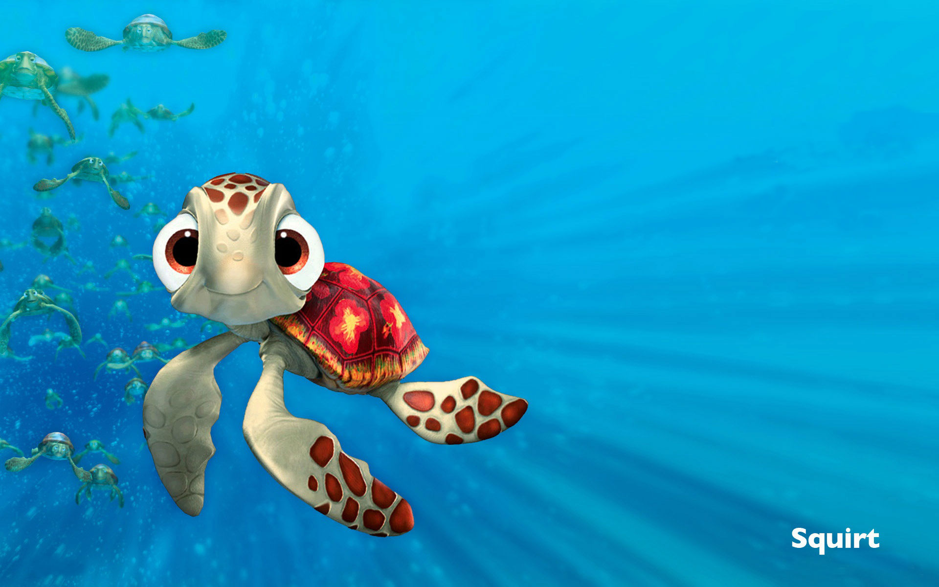 finding nemo squirt wallpapers 1920x1200 227289