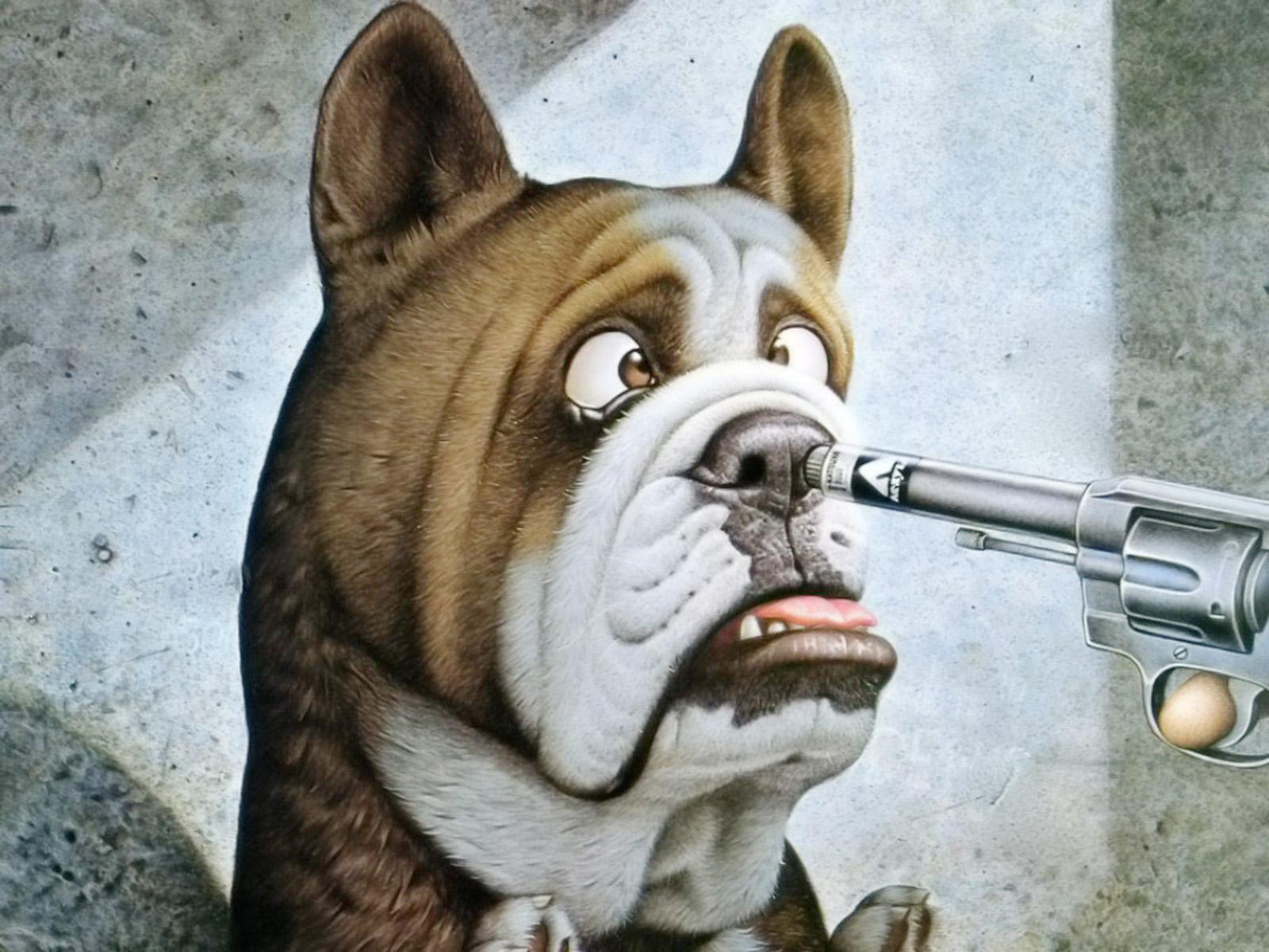 Funny dog pistol 1600 x 1200 download close