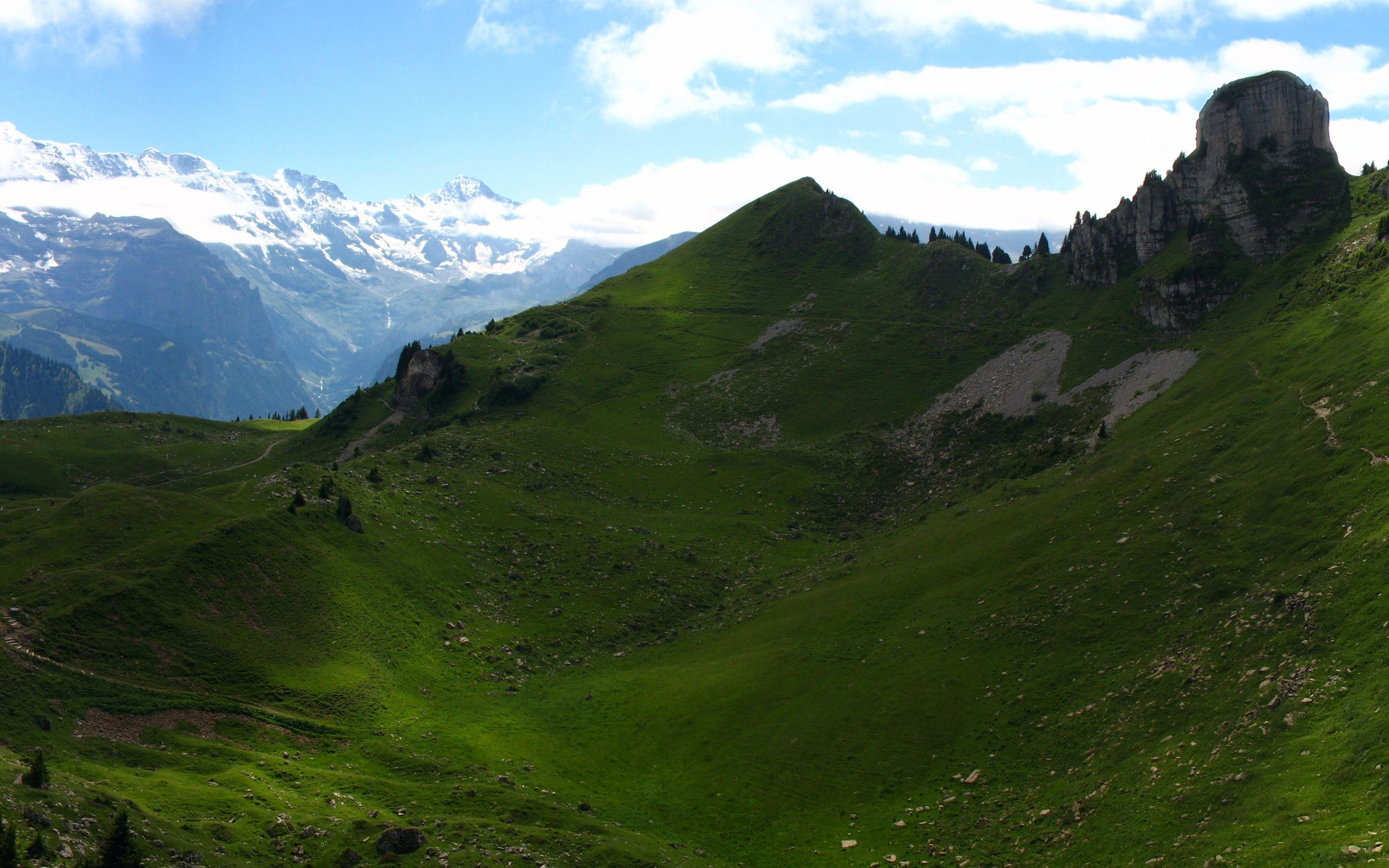 mountain and the greenary - photo #16