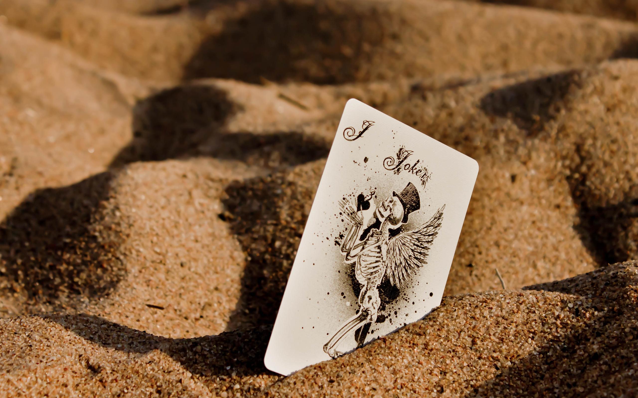 Joker Skeleton Wings Wallpapers 2560x1600 1351403